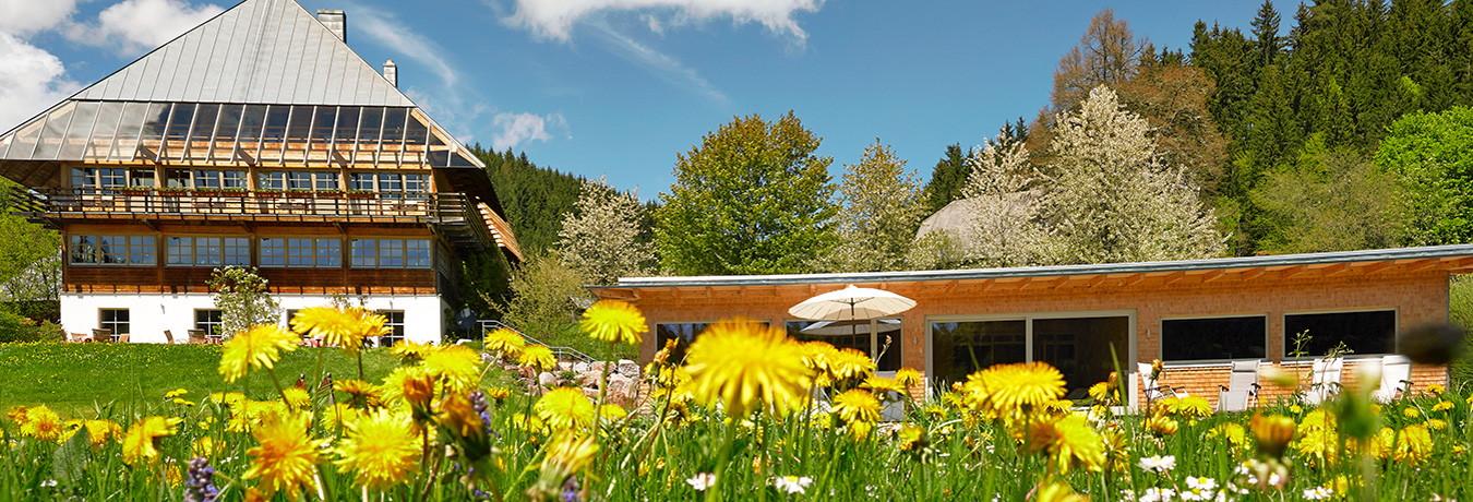 hotel gasthof sommerau ein kleines und feines hotel im schwarzwald. Black Bedroom Furniture Sets. Home Design Ideas